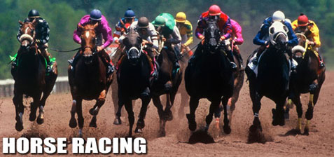 Horse race betting, online horse betting, horse racing picks